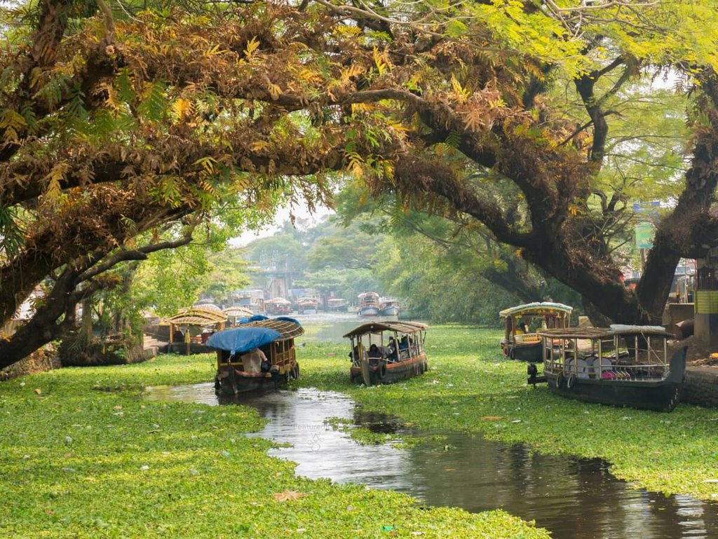 The-Natural-Paradise-of-Alappuzha-0